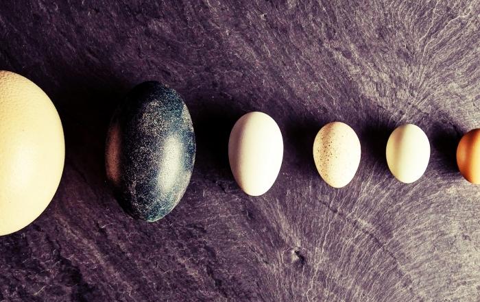 deviled-eggs